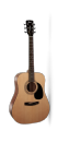 Cort AD810 OP Acoustic Guitar with gig bag